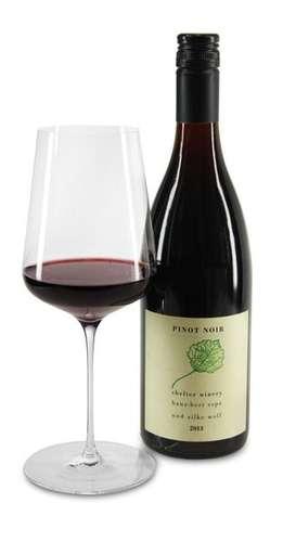 2013 Pinot Noir trocken