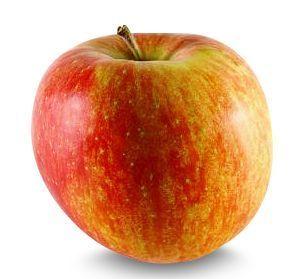Dallmayr Äpfel Elstar